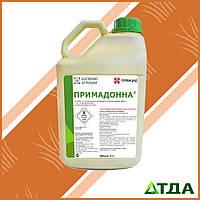 Примадонна гербицид (Прима)