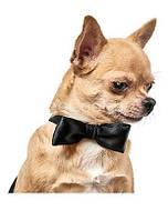 Аксессуар для собак «Бабочка» Pet Fashion