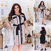 Летнее женское платье-рубашка до колена с поясом размеры 48-58 арт 2280