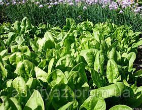 Семена шпината Боа, 1 000 000 семян