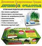 """Домашняя гидропонная грядка """"Луковое Счастье"""" - выращивание лука дома, фото 6"""