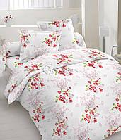 Комплект постельного белья ТМ«TEFIDA»120000539 Евро