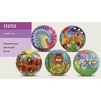 Мяч резиновый C12753 (500шт) ассорти, 25см 60г