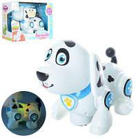 Собака 696-25  ездит, муз, звук, свет, на бат-ке, в кор-ке 25,5-19-13 см