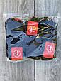 Жіночі шкарпетки бавовна Sport Soks стрейчеві короткі 36-39 12 шт в уп чорні, фото 2