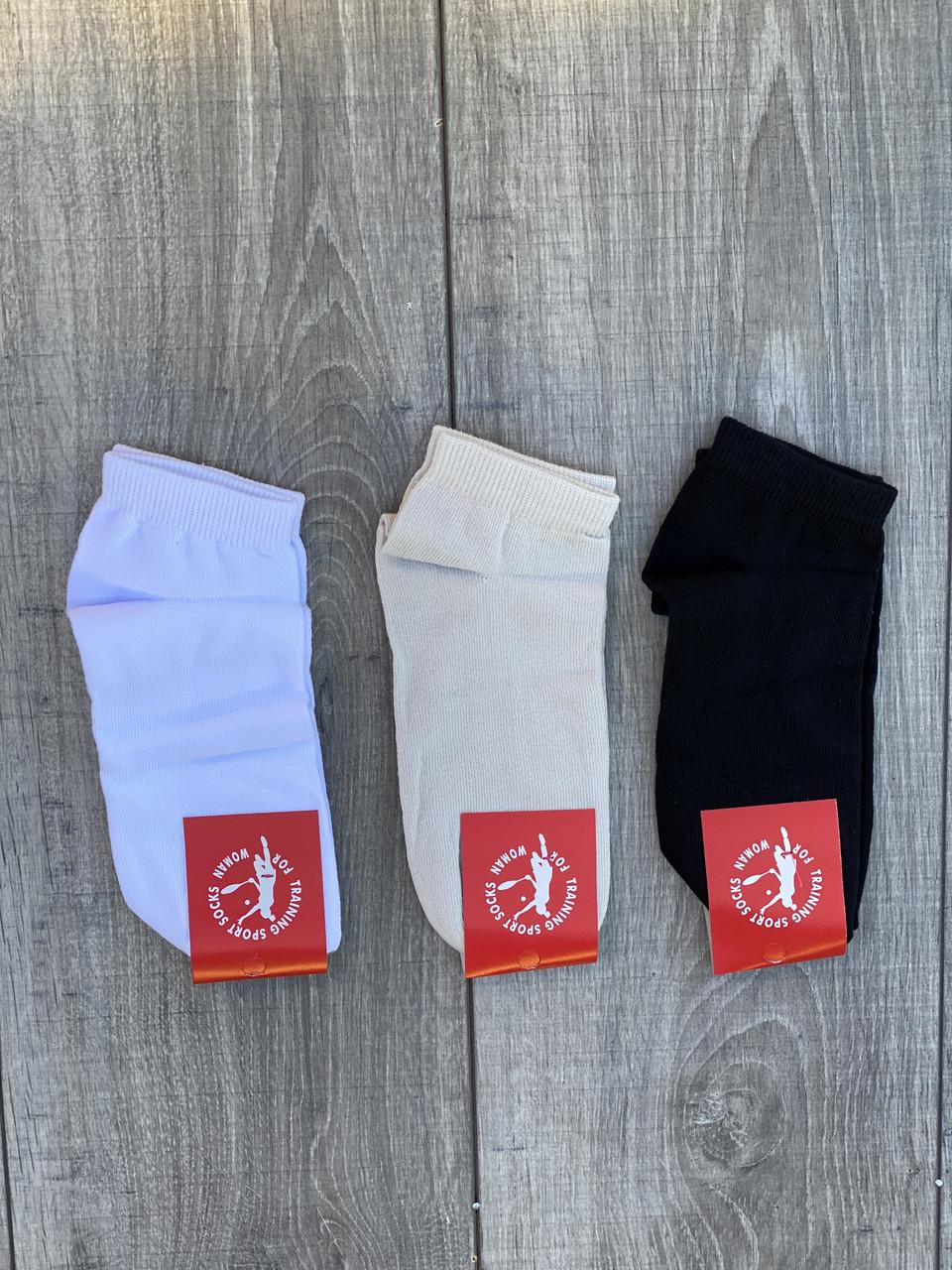 Шкарпетки бавовна Sport Soks жіночі стрейчеві короткі 36-39 12 шт в уп мікс із 3х кольорів