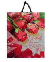 Пакет подарочный Пакет петля 38х42см/80 Розы (25 шт) 0170019