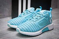 Женские кроссовки в стиле Adidas Climacool, голубые 38(24 см), последний размер