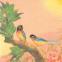 Редкая салфетка для декупажа Тропические птицы 5109