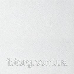Плита  Bioguard Tegular 600x600x15