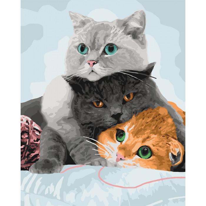 Картина по номерам Идейка КНО4151 Три кота 40х50см ідейка картины Животные, рыбы, птицы