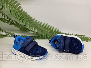 Кроссовки для мальчика  Clibee Польша р.21-24  КМ-352