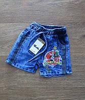 Детские шорты на мальчика турецкие,интернет магазин,детская одежда Турция,детский турецкий трикотаж,джинс