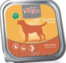 Вологий корм для собак Morando (Морандо) Migliorсane Unico з індичкою, 300 г