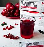 Дренирующий напиток DrainEffect Red NL система очистки и вывода шлаков из организма для похудения драйн эффект, фото 4