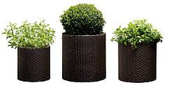 Набір горщиків для квітів Циліндр Planter Set, коричневий