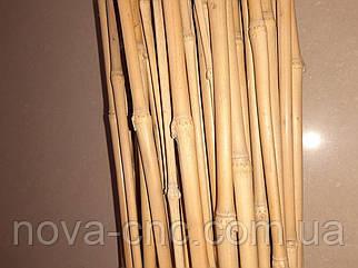 Бамбук декоративний тонкий 100 шт 1,65 м