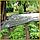 "Агроволокно  белое 19 г/м² , 1,6 х 100 ""Shadow"" (Чехия) 4% мульчирующие, фото 6"