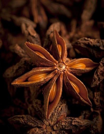 Бадьян, Анис звёздчатый плоды отборные ЭКСТРА, 15 грамм. Анис. Анис плоды.