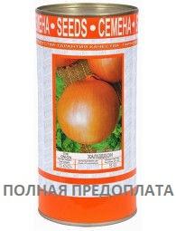 """Семена лука """"Халцедон"""" ТМ ВИТАС, 500 г (в банке)"""