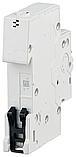 Автоматичний вимикач 20A 1P(C) 4,5kA Basic M ABB, фото 2