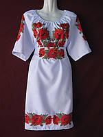 Вишита жіноча сукня PG-06