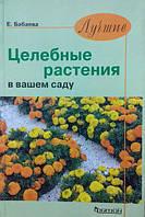 Лучшие целебные растения в вашем саду. Бабаева Е.