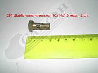 Болт полый форсунки М10х1,25х23. 870007