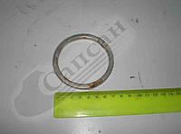 Кольцо коллектора выпускного (производство  Россия). 863420