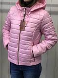 Жіноча демісезонна куртка з плащової тканини на весну і осінь, р-ри 44-54, багато кольорів., фото 3