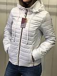 Жіноча демісезонна куртка з плащової тканини на весну і осінь, р-ри 44-54, багато кольорів., фото 4