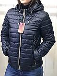 Жіноча демісезонна куртка з плащової тканини на весну і осінь, р-ри 44-54, багато кольорів., фото 6