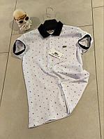 Мужская белая футболка Lacoste