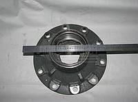 Ступица переднего колеса без подшипников (ЕВРО). 65115-3103015