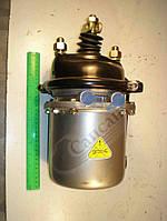 Тормозная камера с пружинным энергоаккумулятором Т-20 (производство КИТАЙ). 100.3519100