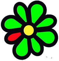 Онлайн консультация по ICQ