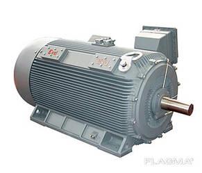 Взрывозащитный электродвигатель взрывозащитного исполнения 1