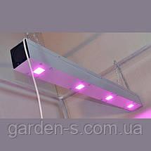 Линейный светодиодный фитосветильник LED Союз 1, фото 2
