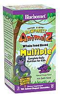 Мультивитамины для Детей, Вкус Винограда, Rainforest Animalz, Bluebonnet Nutrition, 180 жевательных конфет