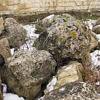 Лесной камень, фото 1