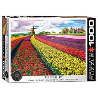 Пазл Eurographics Поле тюльпанов в Нидерландах, 1000 элементов