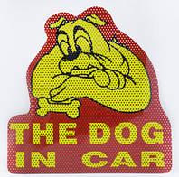Наклейки на авто, стекло, автомобильные универсальные тюнинг  / собака в машине DOG IN CAR