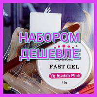 Стартовый набор для наращивания ногтей Акригель Acryl Gel Master Professional Fast Gel П3