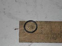 Кольцо уплотнительное  направляющей  толкателя . 740.1007260