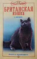 Британская кошка. Красота и независимость. Шевченко Е.