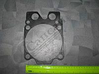 Прокладка головки блока ДВС (Евро (Россия, черная). 740.1003213-24