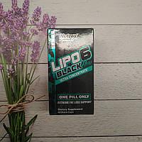 Жиросжигатель Lipo-6 Black Hers Ultra Concentrate 60 caps