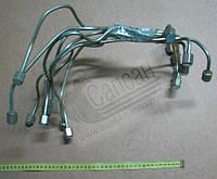 Комплект трубок высокого  давления  (8шт ЕВРО-2). 740.50-1104310/24-90