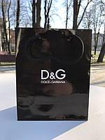 Подарунковий пакет Dolce Gabbana (19x15x8 cm)