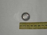 Шестерня привода спидометра Z=24. 14.3802056-10